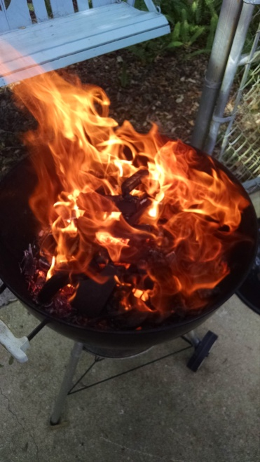 Grilling with Wood (7)