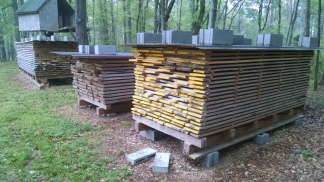 Lovely stacks of yellow-poplar and yellow pine.