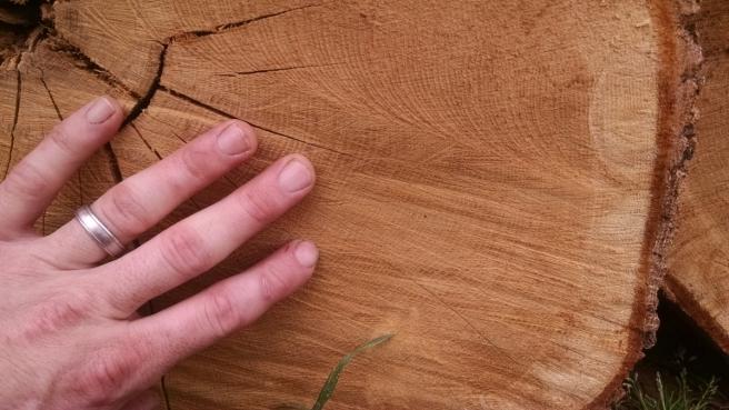 White Oak Slow Grown