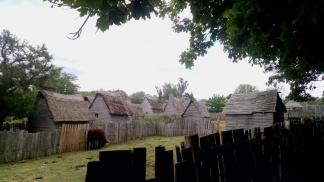 Fenced paddock